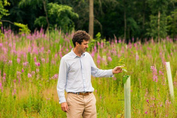 Sir Edward Milbank stood in a field next to a sapling