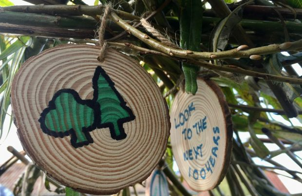 The Forestry Commission logo of two trees is shown on a small circular piece of wood hanging on a tree. Behing it is another piece of wood with the words Look to the next 100 years