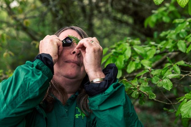 A woman looks through a magnifying glass at a leaf