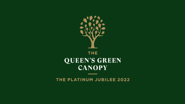 The queens Green Canopy Logo a gold tree on a green background