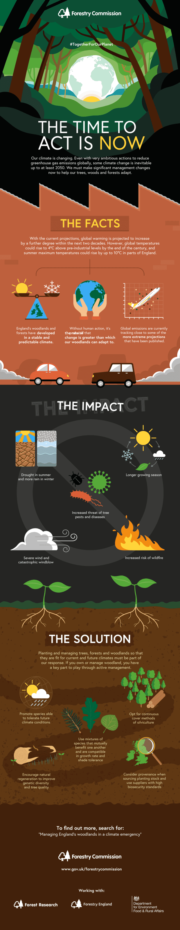 Infographic depicting the facts around climate change, the impact on our planet and what we can do to help. Text from top to bottom: THE TIME TO ACT IS NOW Our climate is changing. Even with very ambitious actions to reduce greenhouse gas emissions globally, some climate change is inevitable up to at least 2050. We must make significant management changes now to help our trees, woods and forests adapt. THE FACTS With the current projections, global warming is projected to increase by a further degree within the next two decades. However, global temperatures could rise to 4°C above pre-industrial levels by the end of the century, and summer maximum temperatures could rise by up to 10°C in parts of England. England's woodlands and forests have developed in a stable and predictable climate. (Under image of scales with a map of UK undernath wighing sun and snow) Without human action, it's probable that the rate of change is greater than which our woodlands can adapt to. (underneath an image of the world being held in two hands) Global emissions are currently tracking close to some of the more extreme projections that have been published. (underneath an image of a graph showing a plane pointing diagonally up to the right). THE IMPACT Drought in summer and more rain in winter (under two graphics, the left one showing sun over dry ground and the right one rain over grey water) Longer growing season (under a graphic of a cycle showing clockwise; sun to rain cloud to leaf to snow) Increased threat of tree pests and diseases (underneath three graphics showing a disease molecule a caterpillar and a beetle) Severe wind and catastrophic windblow (under a graphic showing a large cloud blowing wind) Increased risk of wildfire (underneath a graphic showing fire) THE SOLUTION Planting and managing trees, forests and woodlands so that they are fit for current and future climates must be part of our response. If you own or manage woodland, you have a key part to play through active ma
